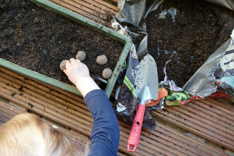 Samenbomben von den Stadtgärtnern - City Gardening für Weltverbesserer und Stadtpiraten