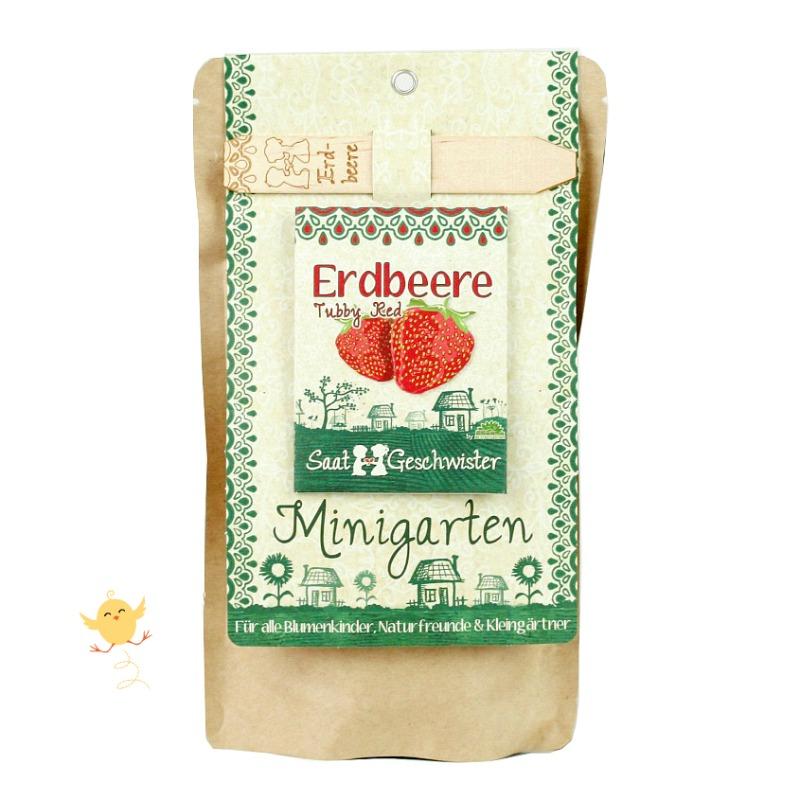 Minigarten Erdbeere von Die Stadtgärtner