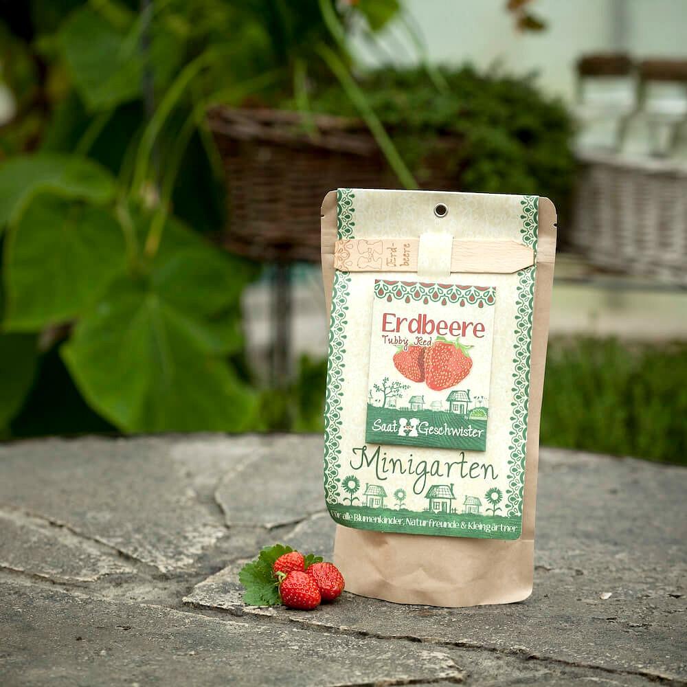 Minigarten Erdbeere von Die Stadtgärtner – designupdate Shop